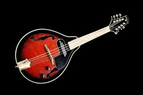 Mandolin on a black background