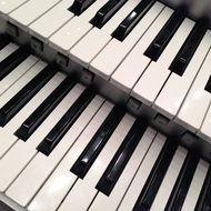 musical keyboard instruments