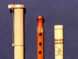 various wooden musical instruments