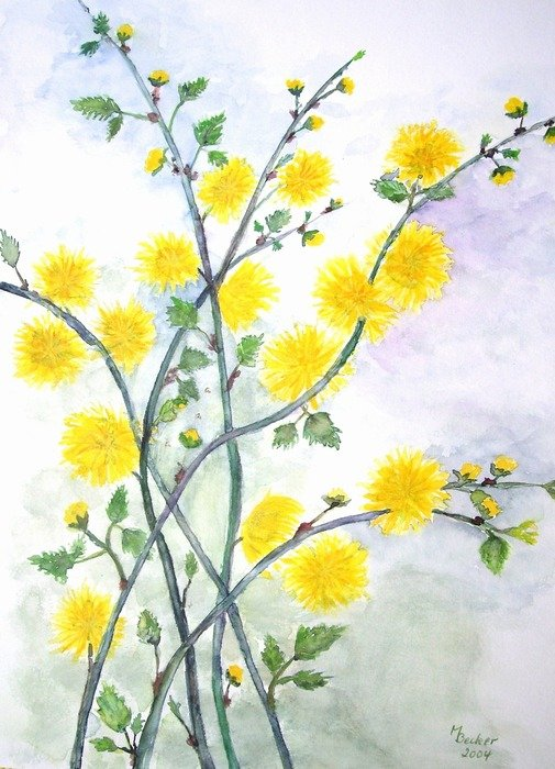 flowers painting image