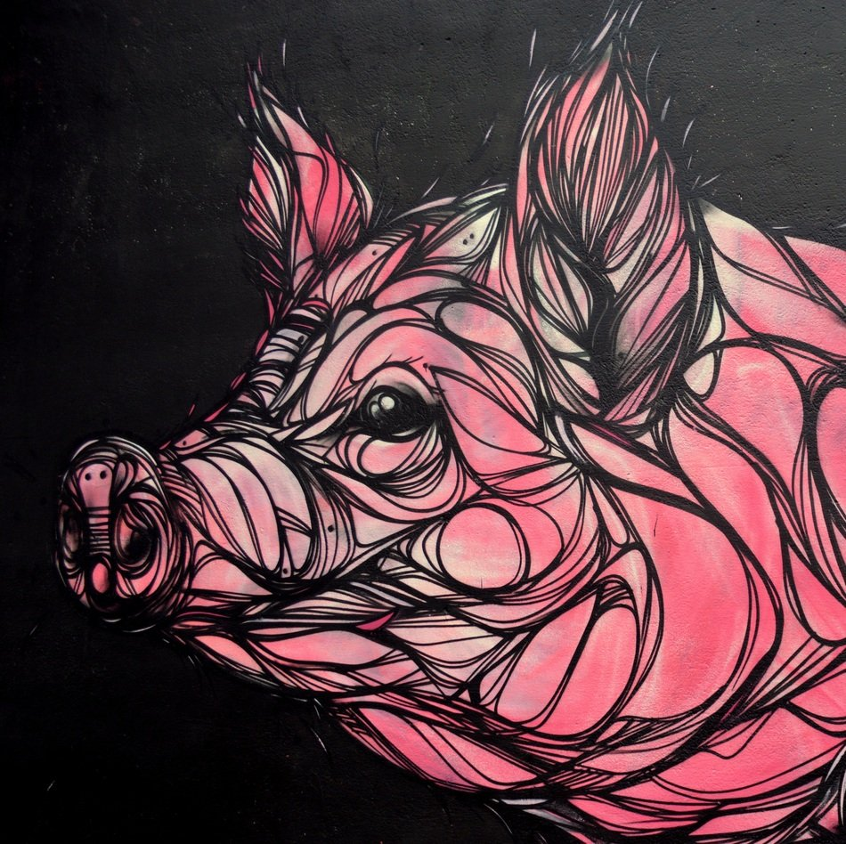 Graffiti depicts a pink pig with divorces