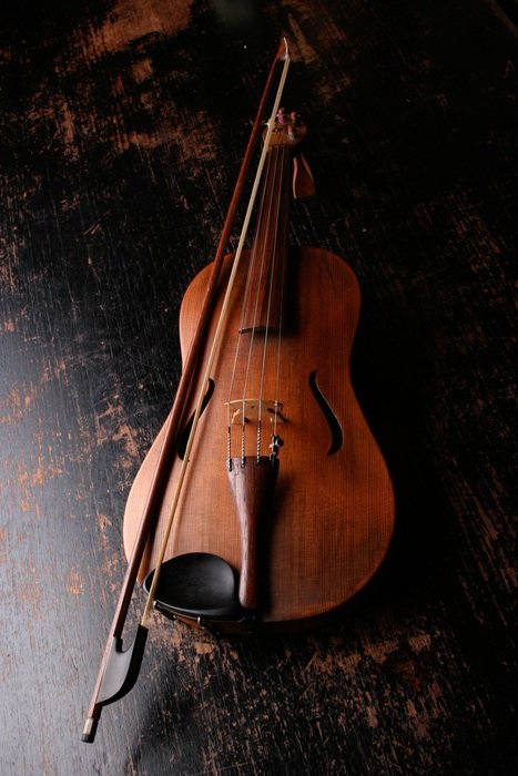 Classical wooden violin