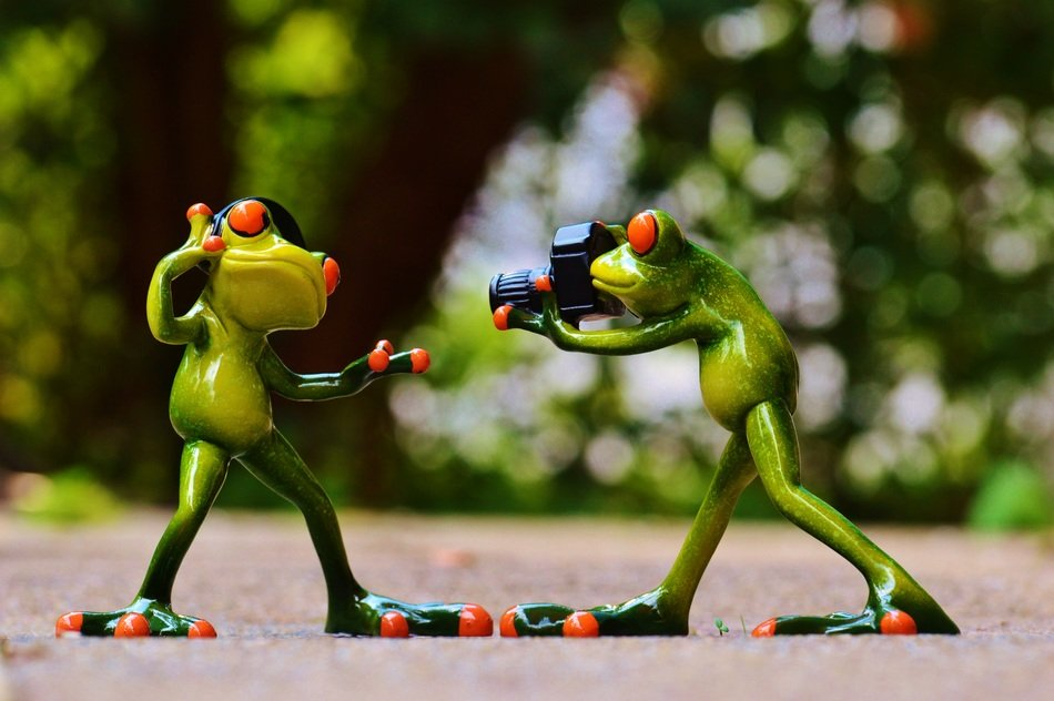 frogs headphones music dance pose