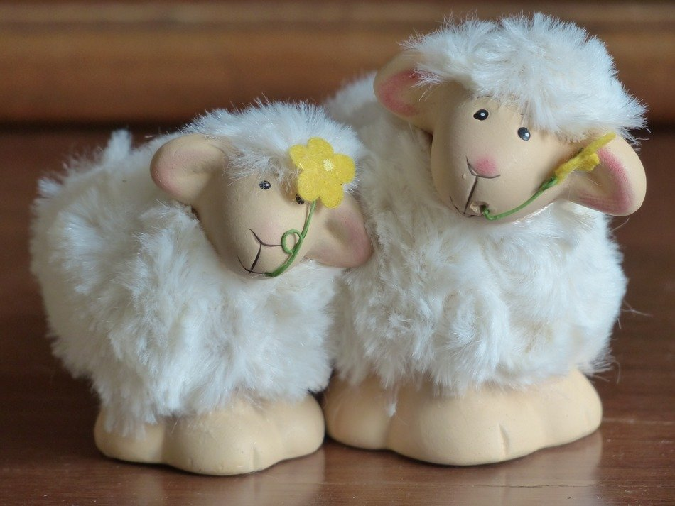 two funny sheep, decoration