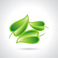 Eco icon green leaf vector illustration isolated N2