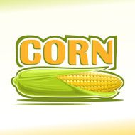 Vector illustration on the theme of corn