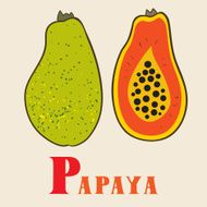 P for papaya Vector Illustration hand-drawn style
