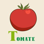 T for tomate Vector Illustration hand-drawn style
