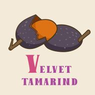 V for velvet tamarind Vector Illustration hand-drawn style