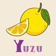 Y for yuzu Vector Illustration hand-drawn style