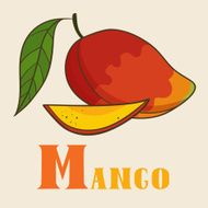 M for mango Vector Illustration hand-drawn style