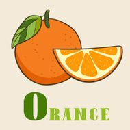 O for orange Vector Illustration hand-drawn style