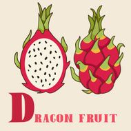 D for dragon fruit Vector Illustration hand-drawn style