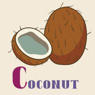 Ð¡ for coconut Vector Illustration hand-drawn style