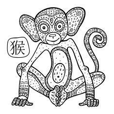Chinese Zodiac Animal astrological sign monkey N3