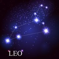 leo zodiac sign of the beautiful bright stars N2