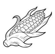 Coloring book fruits and vegetables (corn)