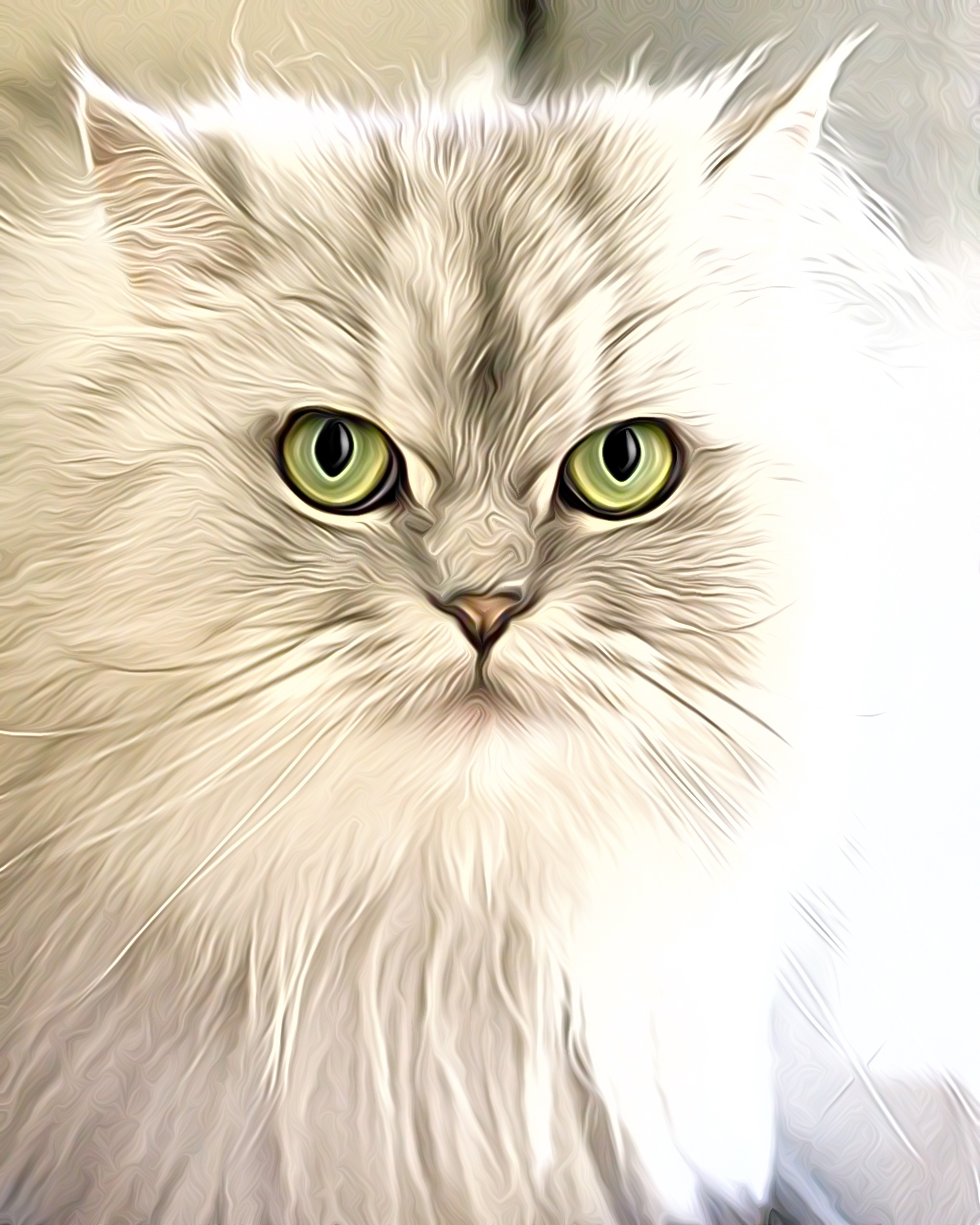 White Cat With Green Eyes Graphics Free Image