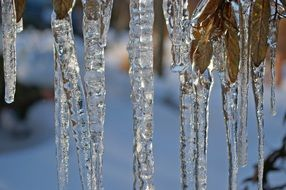 large transparent icicles