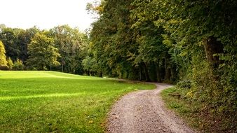 view of the track in the park in Bavaria