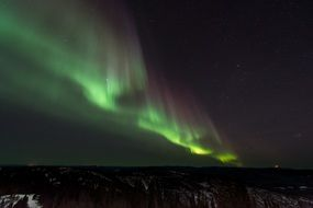 aurora borealis northern lights forest view