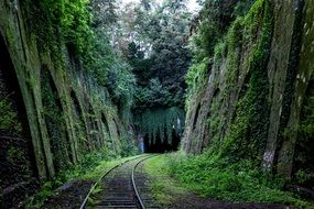 green train tracks