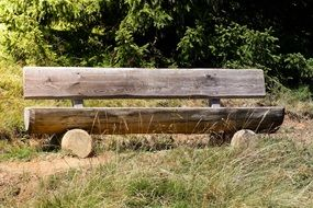bank wooden bench in forest