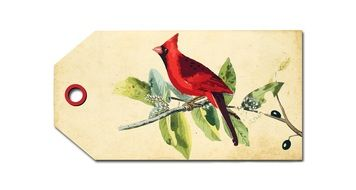nice bird cardinal drawing