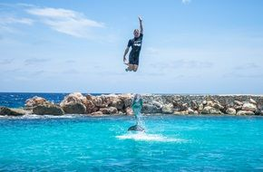 Man jumping with dolphin in water