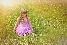 Little girl in a beautiful dress with long curly hair amid the meadow