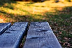 wooden bench among nature close-up