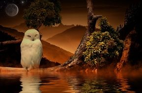 mystical fantastic landscape with a white owl