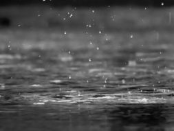 rain drops black and white