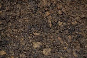 dirt soil potting