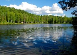 Lake in a forest in Finland
