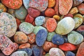 colorful sea stones