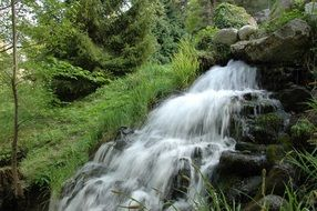 cascade waterfall in thickets