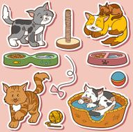 Color set of cute domestic animals and objects vector cats