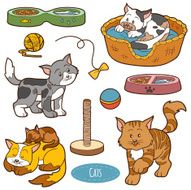 Color set of cute domestic animals and objects vector cats N2