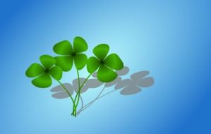 four-leaf clover at blue background, drawing