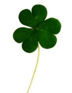 Clipart of a clover