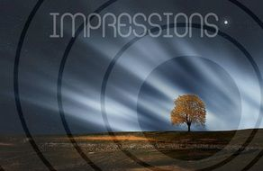 "Circles and the inscription ""impressions"" on the background of a lonely tree"