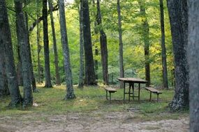 Table with benches in the forest