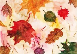 Drawing of the colorful maple leaves