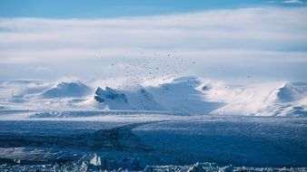 remote view of a flock of birds over a glacier