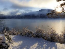 picturesque winter landscape, canada, canim lake