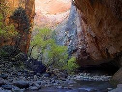 Zion in National Park
