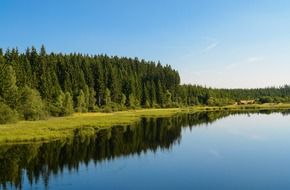 Landscape of the calm lake in a forest