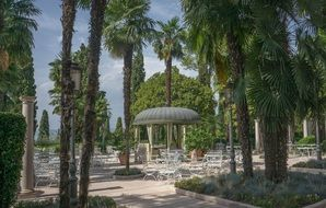 resort palm trees lake garda sirmione