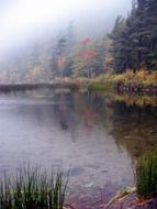 picturesque pond in a haze of fog